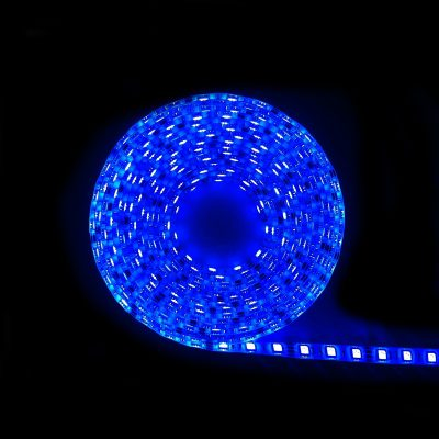 LED IP68 Strip Light 5m BLUE 5050 - LEDIP68BLUE5050