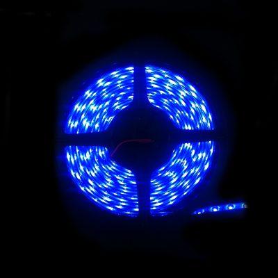 LED IP68 Strip Light 5m Blue 3528 - LEDIP68BLUE3528