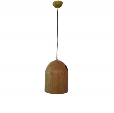Deficit 210 Wooden Pendant Light - P1125DEF21WDN